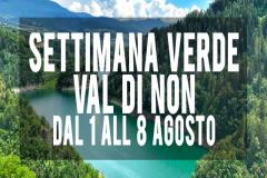SETT-VERDE-VALDINONRIQUADRO-SITO-WEB